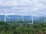 Dự án điện gió Hướng Linh 2 do Tân Hoàn Cầu làm chủ đầu tư (Ảnh: Internet)