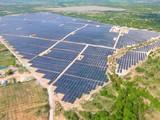 Một dự án điện mặt trời tại Việt Nam có công suất lắp đặt 50 MW mà SEC đã thâu tóm (Ảnh: Super Energy Corporation)