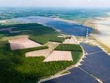 Một dự án năng lượng tái tạo của Xuân Cầu Group (Nguồn: xuancau.com.vn)