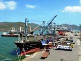 Cảng Quy Nhơn. (Ảnh: Báo Bình Định)