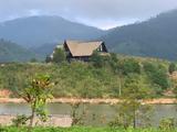 Chuyện kể từ trang trại M'Drắk: Đặng Lê Nguyên Vũ giờ ra sao?