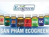 Eco Pharma - nhà phân phối độc quyền sâm Alipas Platinum, sâm Angela Gold: Doanh thu nghìn tỷ, lợi nhuận mỏng tang...