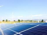 """Sau điện mặt trời, lại xuất hiện """"phong trào"""" điện gió"""