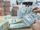 Các ngân hàng thương mại bán gần 7 tỉ USD về NHNN