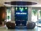 Viglacera dự kiến chia cổ tức năm 2021 bằng tiền với tỷ lệ 12% (Nguồn: Viglacera)