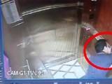 Nguyên Phó Viện trưởng VKSND Đà Nẵng khó chối cãi tội dâm ô bé gái trong thang máy