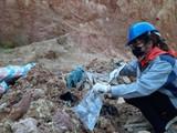 Cơ quan chức năng đã tìm ra thủ phạm đổ chất thải nguy hại ở Sóc Sơn.