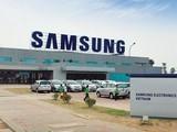 Công ty TNHH Samsung Display Việt Nam - nơi bệnh nhân mắc COVID-19 thứ 262 làm việc. Ảnh: Samsung Việt Nam.