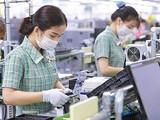 Công xưởng làm việc của công nhân Samsung Việt Nam - Ảnh: Samsung