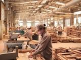 """Việt Nam, dù đã là một """"trung tâm chế biến gỗ của Châu Á"""", nhưng nguồn cung nguyên liệu trong nước vẫn không đủ để phục vụ tiêu thụ nội địa và xuất khẩu, nên bình quân mỗi năm vẫn phải nhập khoảng 4-4,5 triệu m3 gỗ nguyên liệu."""