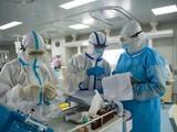 Nhân viên y tế chuẩn bị thuốc men chăm sóc cho bệnh nhân. Ảnh: AFP