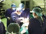 Các bác sĩ phẫu thuật tiến hành thay khớp háng thế hệ mới cho anh N.V.T. (Ảnh: Bệnh viện Hữu nghị Việt Đức).