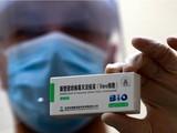 Vaccine phòng COVID-19 Vero Cell của Sinopharm (Ảnh - VT)
