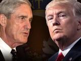 Sau khi công tố viên đặc biệt Robert Mueller thực hiện cuộc điều tra, ông không đưa ra được bất cứ kết luận nào chứng minh Donald Trump có cấu kết với người Nga và gây cản trở pháp luật.