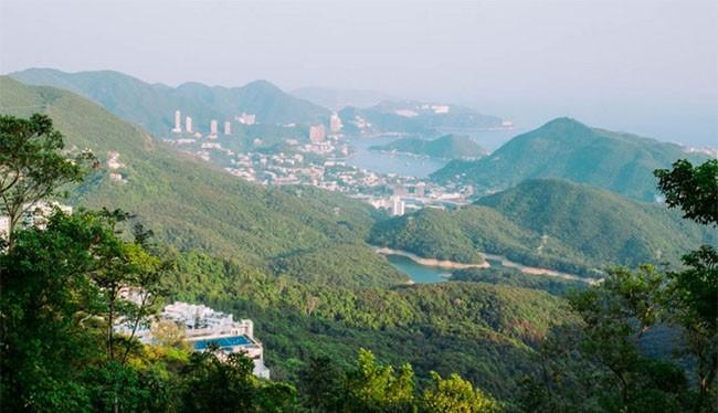 Khu phố The Peak tại Hồng Kông (ảnh: Business Insider)