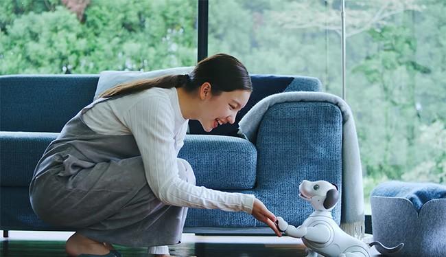 Robot thú cưng Aibo (ảnh: YouTube)