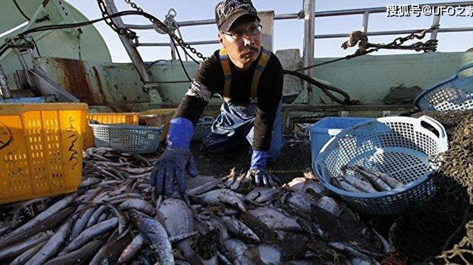 Nhật phát hiện cá nhiễm phóng xạ ở Fukushima. Ảnh: Sohu