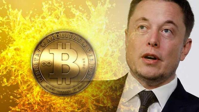 Elon Musk và Bitcoin có mối quan hệ chặt chẽ.
