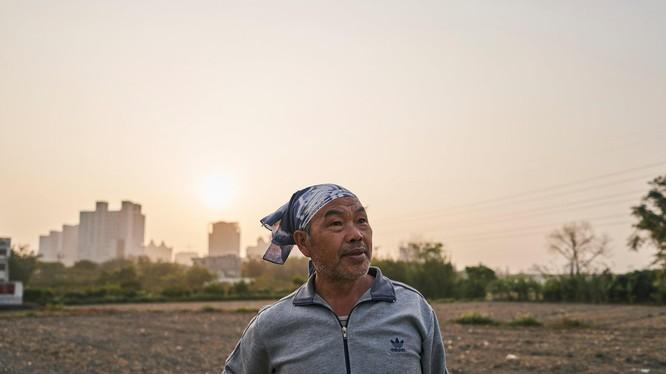 Người dân Đài Loan được khuyến khích không sản xuất nông nghiệp trong đợt hạn hán.