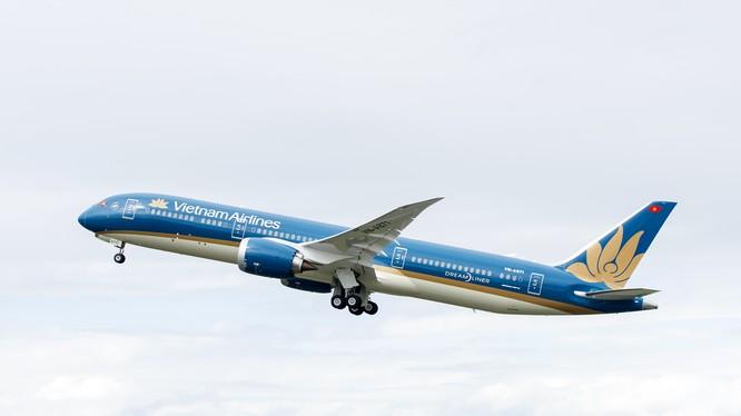 Một chiếc tàu bay Boeing 787 của Vietnam Airlines (Nguồn: VNA)