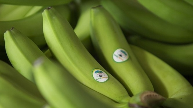 Doanh thu trái cây của HNG tăng mạnh trong Quý 1/2020 (Ảnh minh họa - Nguồn: Internet)