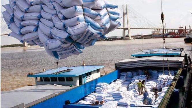 Gạo Việt trước nguy cơ bị giả mạo xuất xứ, mất thị phần (Ảnh minh hoạ - Nguồn: Internet)