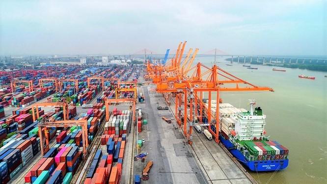 Triển vọng sáng của doanh nghiệp cảng biển