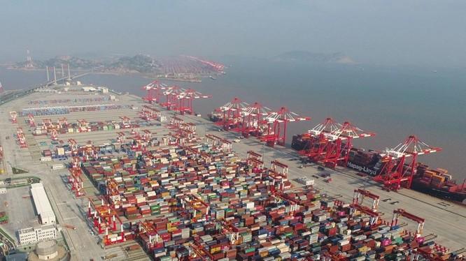 Chính sách tăng thuế đánh vào hàng hóa Trung Quốc xuất khẩu sang Mỹ đã gây thiệt hại nghiêm trọng cho các công ty và người dân Mỹ