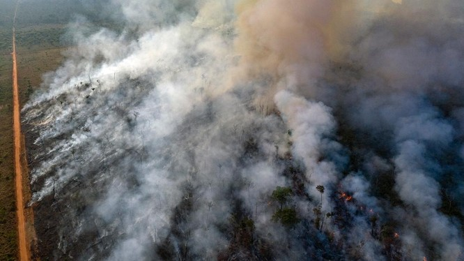 Thảm họa cháy rừng Amazon được báo chí Mỹ cho là có liên quan đến việc Trung Quốc nhập khẩu đậu tương của Brazil thay cho đậu Mỹ. (Ảnh: Đa Chiều)