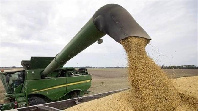 Trung Quốc đã đồng ý mua 50 tỷ USD nông sản Mỹ, hứa mua thêm 200 tỷ USD hàng hóa Mỹ trong 2 năm để đối lại Mỹ không tăng thuế vào ngày 15/12.
