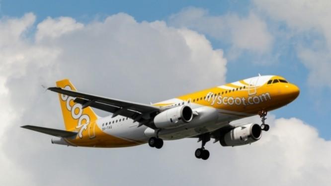 Vụ việc hãng Scoot Singapore chở khách Vũ Hán bị từ chối nhập cảnh về Hàng Châu ghép với khách du lịch Chiết Giang đang gây xôn xao dư luận (Ảnh: rthk.hk)