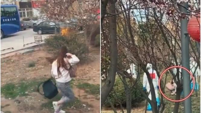 Cô gái nhập cảnh nhảy qua cửa sổ xe chạy trốn và bị khống chế (Ảnh: DF).