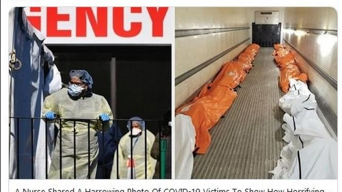 Hình ảnh về những xác chết trong thùng xe tải đăng trên trang Buzz Feet (Ảnh: Guancha).