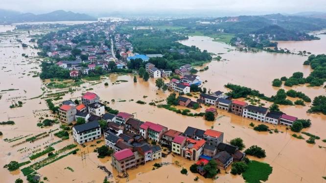 Nạn lũ lụt nghiêm trọng trong mấy tháng qua đã làm hàng triệu ha cây trồng ở nông thôn Trung Quốc thất thu (Ảnh: Tân Hoa xã).