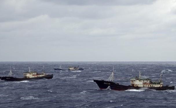 Trung Quốc tổ chức các đội tàu đánh bắt viễn dương (Ảnh: Dongfang).
