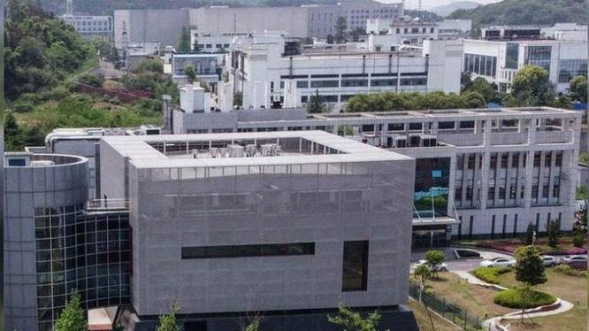 Viện nghiên cứu Virus Vũ Hán, nơi bị hai nhjaf khoa học Mỹ nghi ngờ tạo ra SARS-CoV-2 trong phòng thí nghiệm (Ảnh: ibtimes).