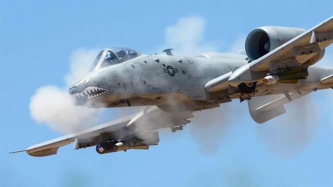 """A-10 """"Lợn Lòi"""" tuy đã 40 tuổi nhưng vẫn được lưỡng viện Quốc hội Mỹ ưu ái ủng hộ (Ảnh: USAirforce)."""