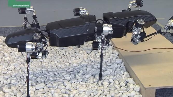 Hector, một robot khổng lồ giống côn trùng nghiên cứu sự di chuyển trên địa hình (nguồn Internet)