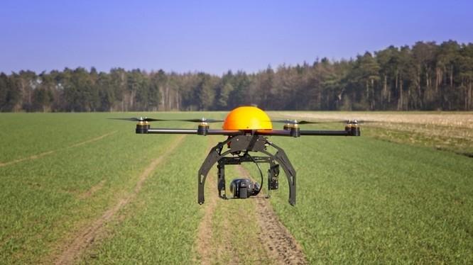 Drone tự trồng cây thay thế con người.