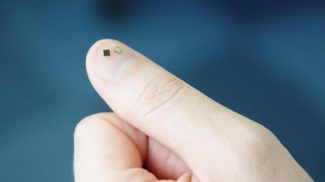 Samsung vừa giới thiệu chip bảo mật mới dành cho điện thoại thông minh vào hôm thứ Ba. Ảnh: ZDNet