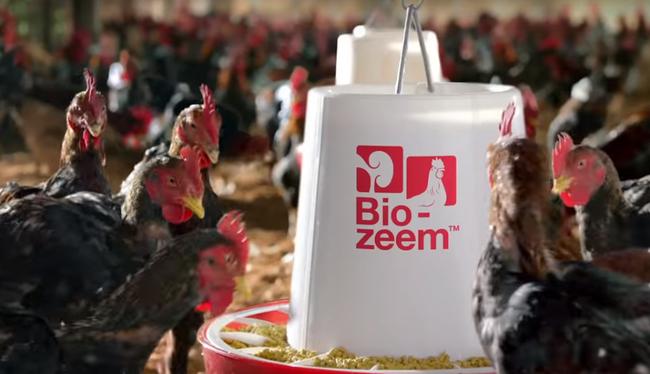 Masan Group muốn huy động 1 tỷ USD cho mảng thức ăn chăn nuôi