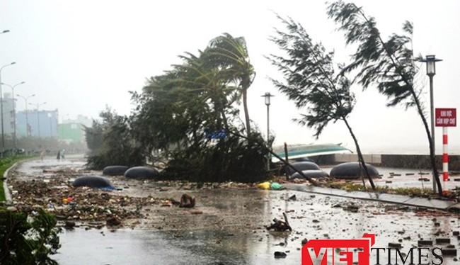 Đà Nẵng đầu tư hơn 200 tỷ đồng đầu tư đê, kè biển chống xâm thực cuối tuyền đường Nguyễn Tất Thành