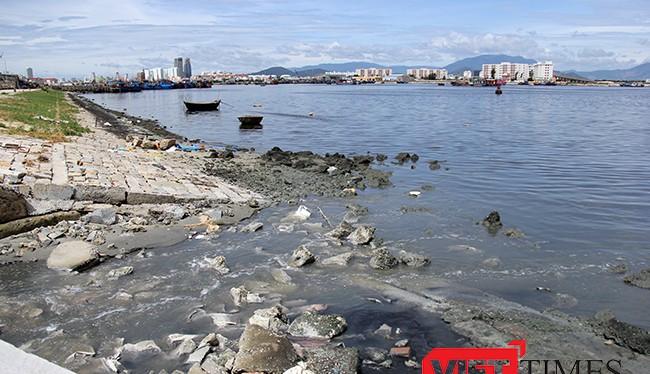 Tình trạng ô nhiễm tại Âu thuyền Thọ Quang đang diễn biến xấu