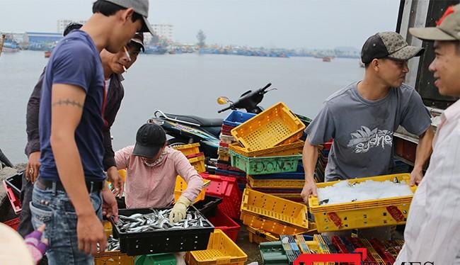 Các loại thủy sản khai thác nhập vào cảng cá trên địa bàn, chủ tàu cá trước khi đưa thuỷ sản lên cảng cá để tiêu thụ phải thực hiện khai báo về nguồn gốc, xuất xứ thủy sản khai thác; xuất trình sổ nhật ký khai thác thuỷ sản cho Ban quản lý chợ