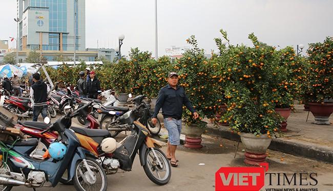 Mưa kéo dài, kinh doanh khó khăn, sáng 25/1, Chủ tịch UBND TP Đà Nẵng Huỳnh Đức Thơ quyết định giảm giá 50% tiền thuê mặt bằng bán hoa cho các tiểu thương.