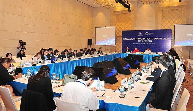 Ngày 20/2, Hội nghị các quan chức cao cấp APEC lần thứ nhất (SOM1) tại Nha Trang đã bước sang ngày thứ 3 với sự tham gia của hơn 580 đại biểu đến từ 21 quốc gia thành viên APEC.