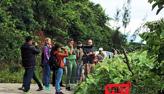 Sáng 2/4, một loạt các Giám đốc tổ chức Bảo tồn động vật trên thế giới đã cùng tập hợp đi thị sát thực địa hệ sinh thái bán đảo Sơn Trà sau khi xuất hiện những động thái xâm hại tại đây.