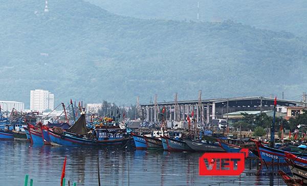"""Đà Nẵng tiếp tục ra """"tối hậu thư"""" xử lý môi trường tại Âu thuyền và Cảng cá Thọ Quang"""