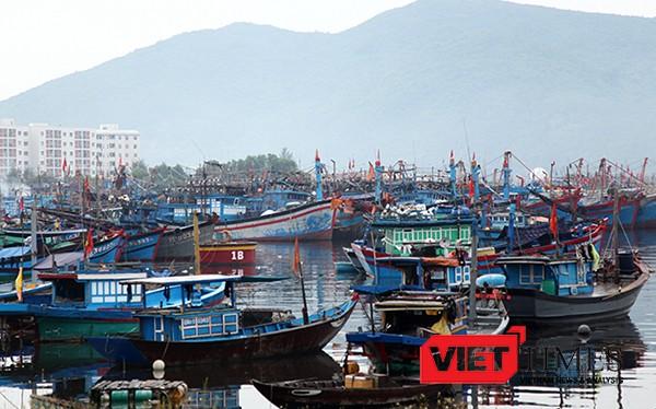 Tính đến sáng 14/9, Đà Nẵng đã thông tin cho 1.619 phương tiện/7.152 lao động được biết diễn biến của bão số 10. Kêu gọi 1.457 phương tiện/5.840 lao động về bờ neo đậu, số phương tiện còn hoạt động trên biển là 162/1.312 lao động đã nắm thông tin, đường đ