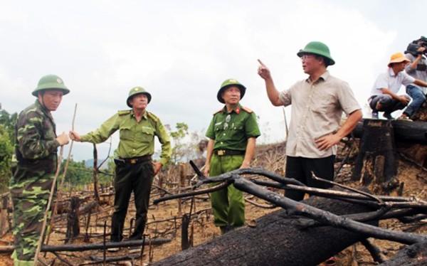 ông Lê Trí Thanh, Phó Chủ tịch UBND tỉnh Quảng Nam đã yêu cầu cơ quan kiểm lâm và Công an tỉnh khẩn trương điều tra, hoàn tất hồ sơ để khởi tố vụ án để điều tra, làm rõ.